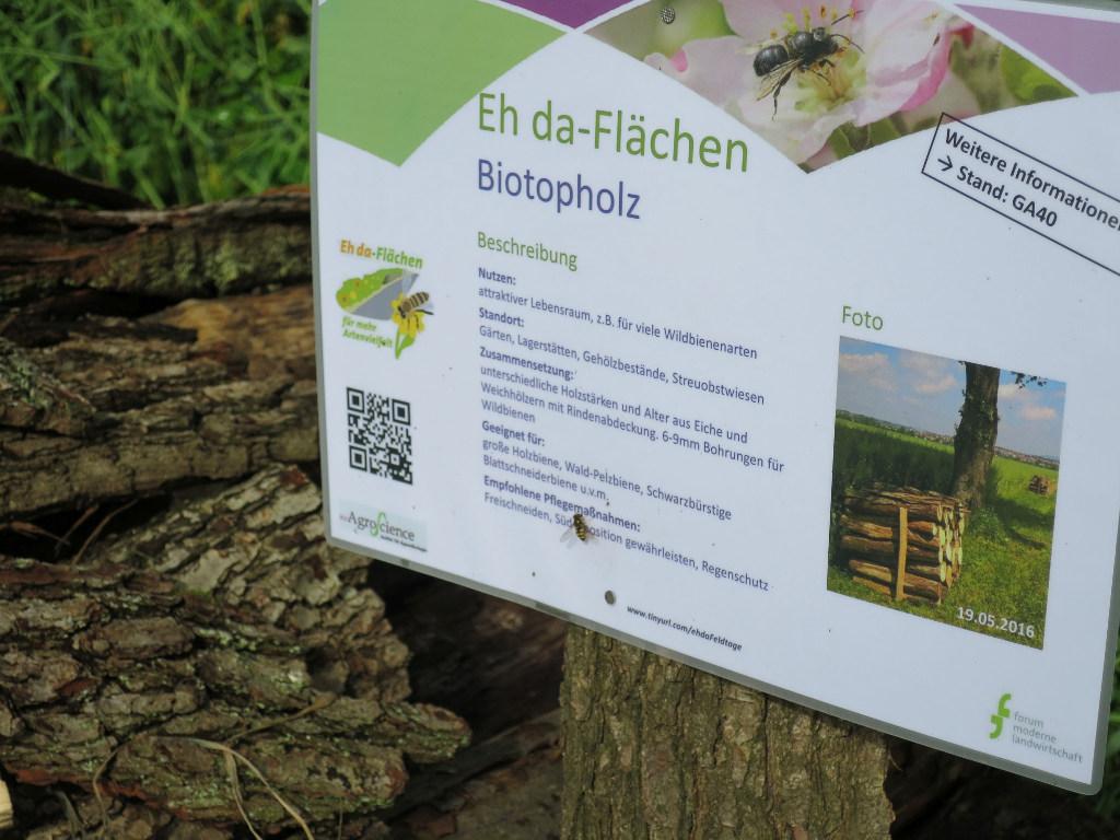 Biotopholz.jpg